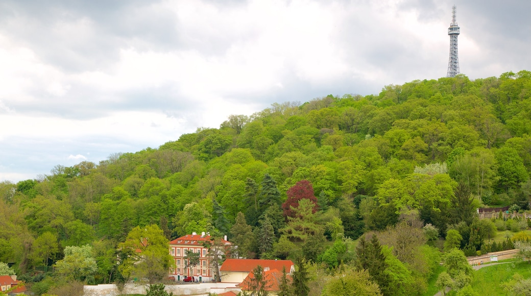 Petrin Lookout Tower which includes forests