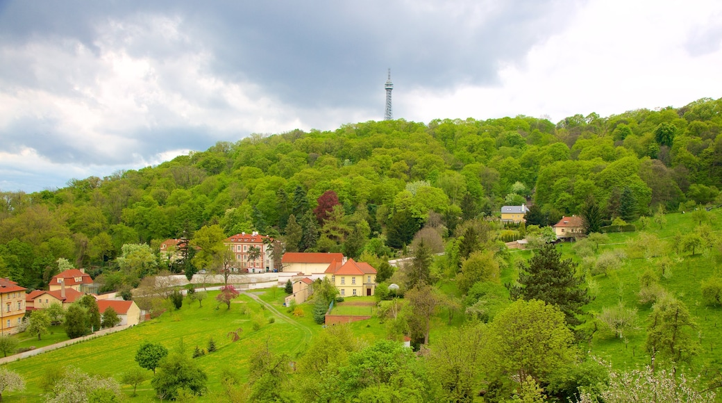Petrin Lookout Tower showing forests and a small town or village