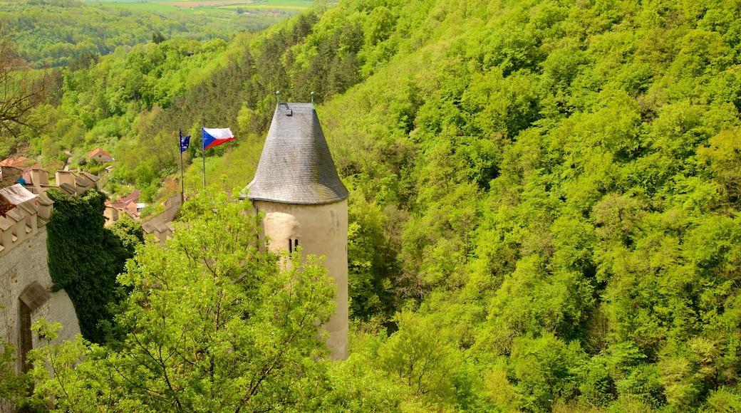 Karlstejnin linna joka esittää perintökohteet, metsänäkymät ja linna tai palatsi