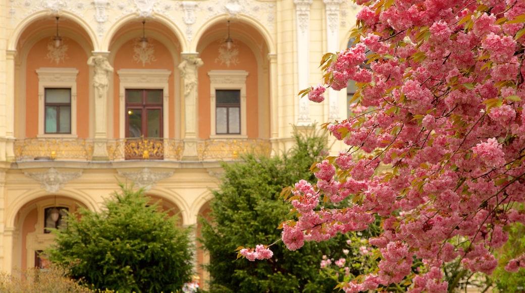 Karlovy Vary Bezirksmuseum das einen Geschichtliches und Blumen