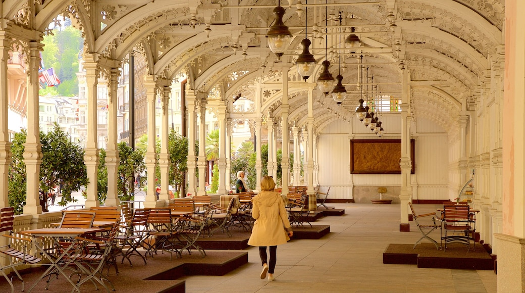 Karlovy Vary mit einem Geschichtliches