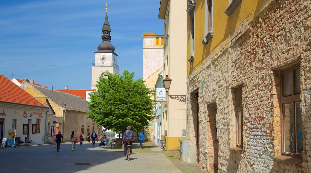 Trnava showing a city and street scenes