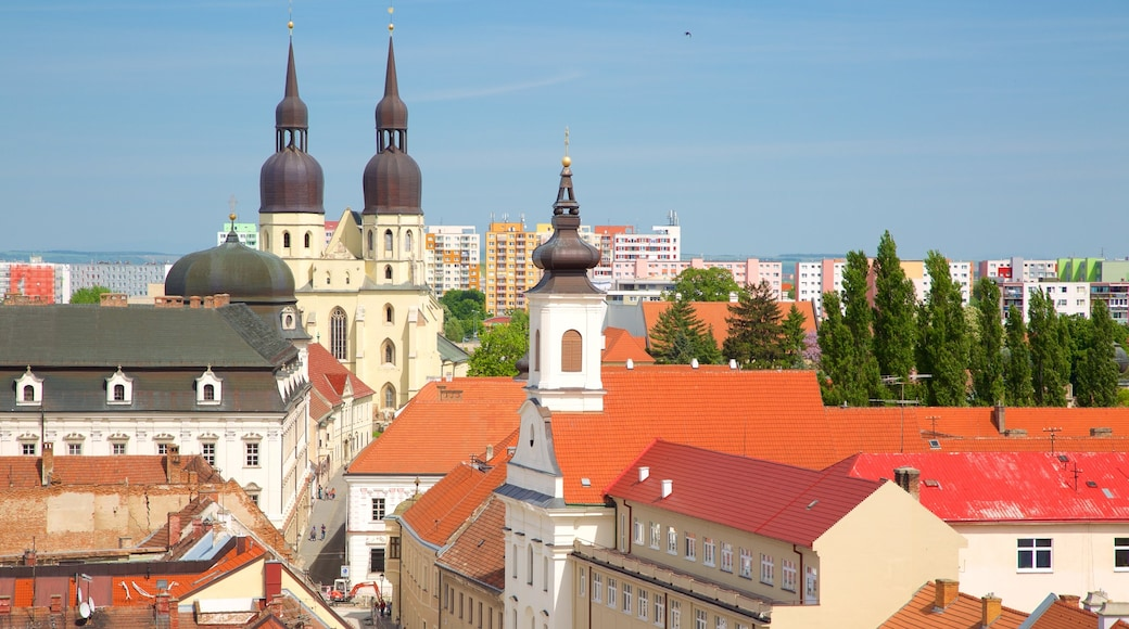 Trnava St. John the Baptist Cathedral featuring a city