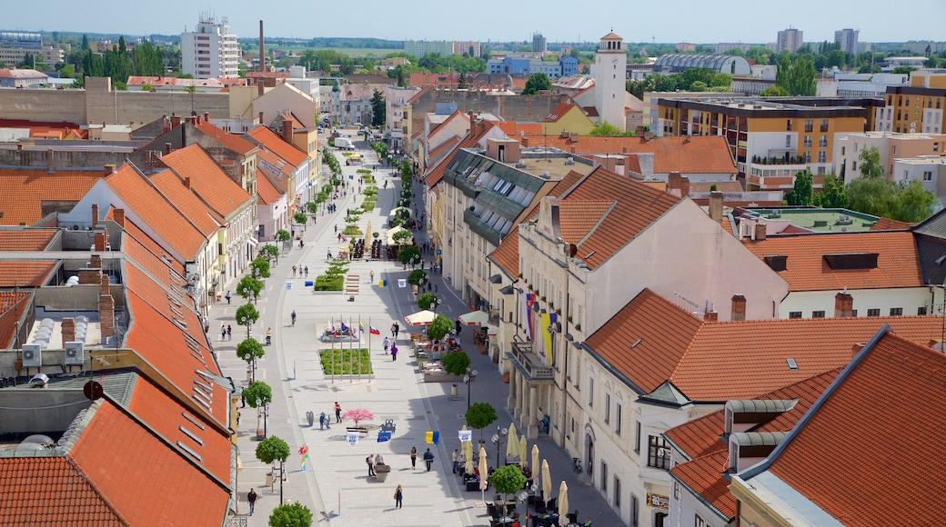 Trnava which includes a square or plaza, street scenes and a city