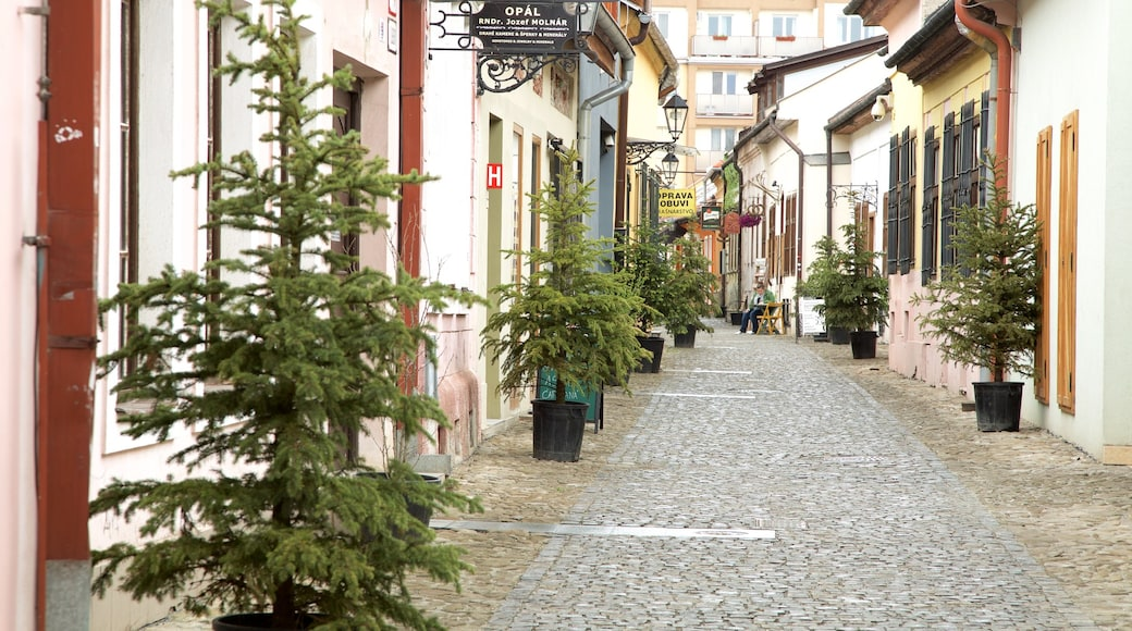 Kosice featuring street scenes and a city