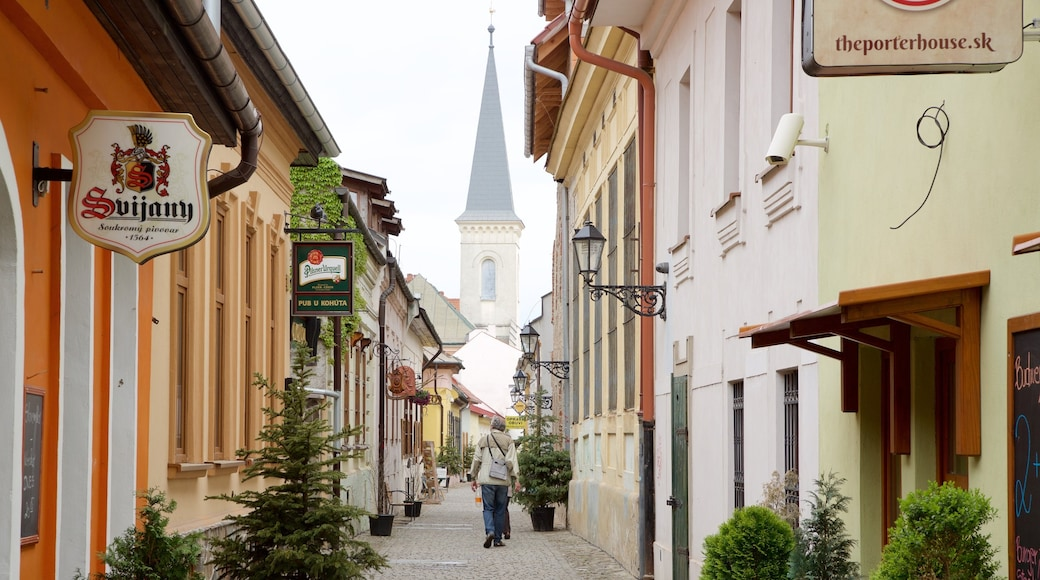 Kosice showing street scenes and a small town or village