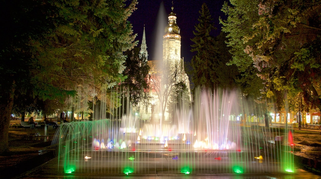 Kosice featuring a fountain, night scenes and a city