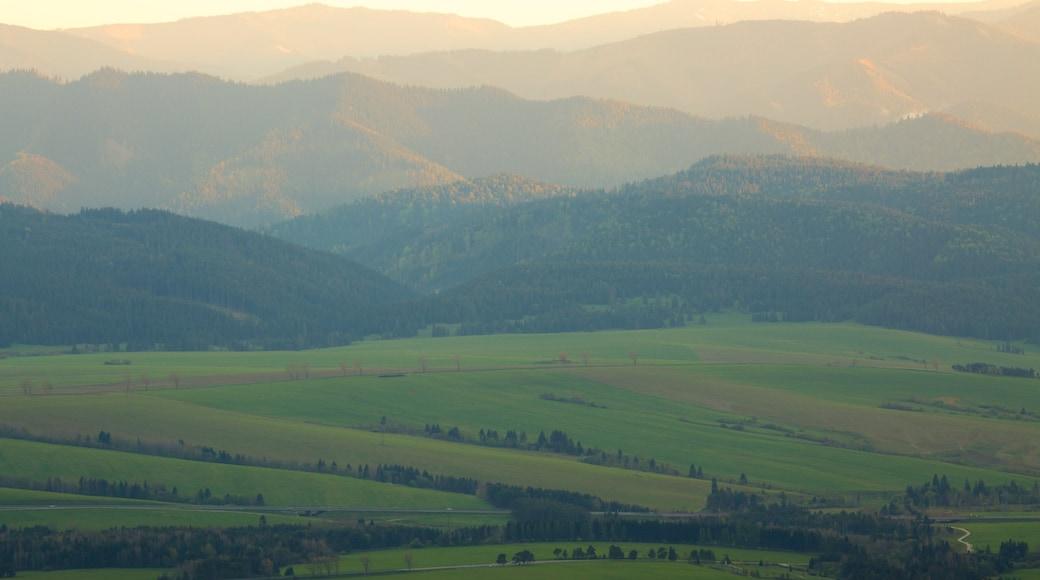 Strbske Pleso featuring farmland and tranquil scenes