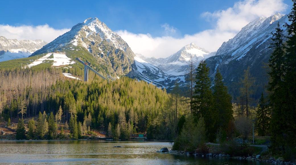 Štrbské Pleso das einen Berge, See oder Wasserstelle und Waldmotive