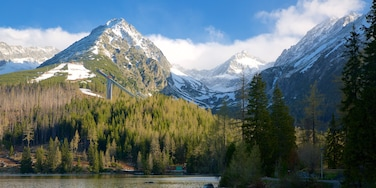 Strbske Pleso which includes a lake or waterhole, mountains and forest scenes