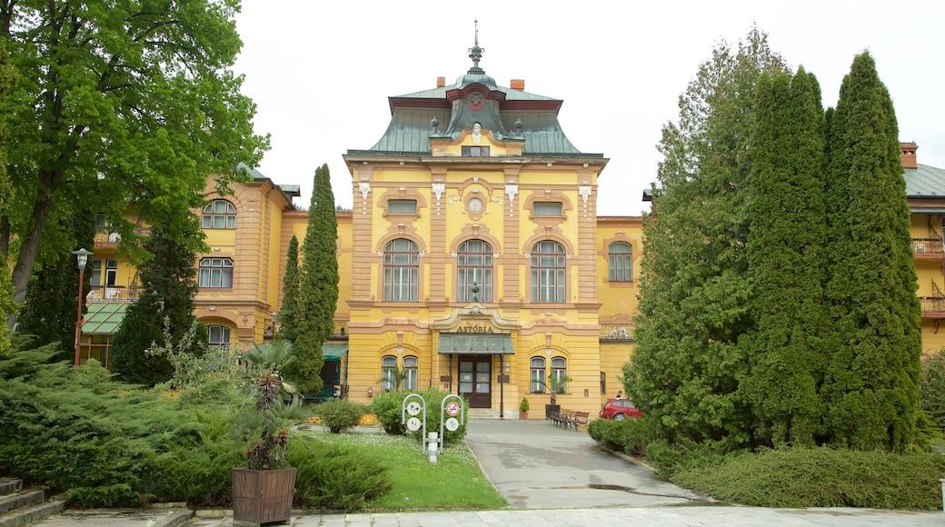 Bardejov which includes a park