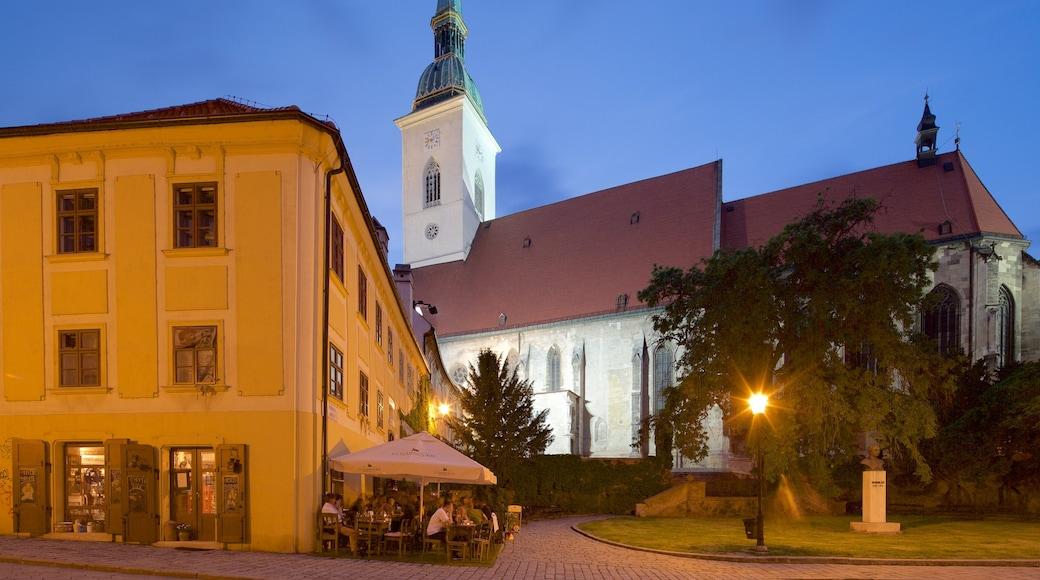 St. Martinsdom welches beinhaltet bei Nacht, Stadt und Kirche oder Kathedrale
