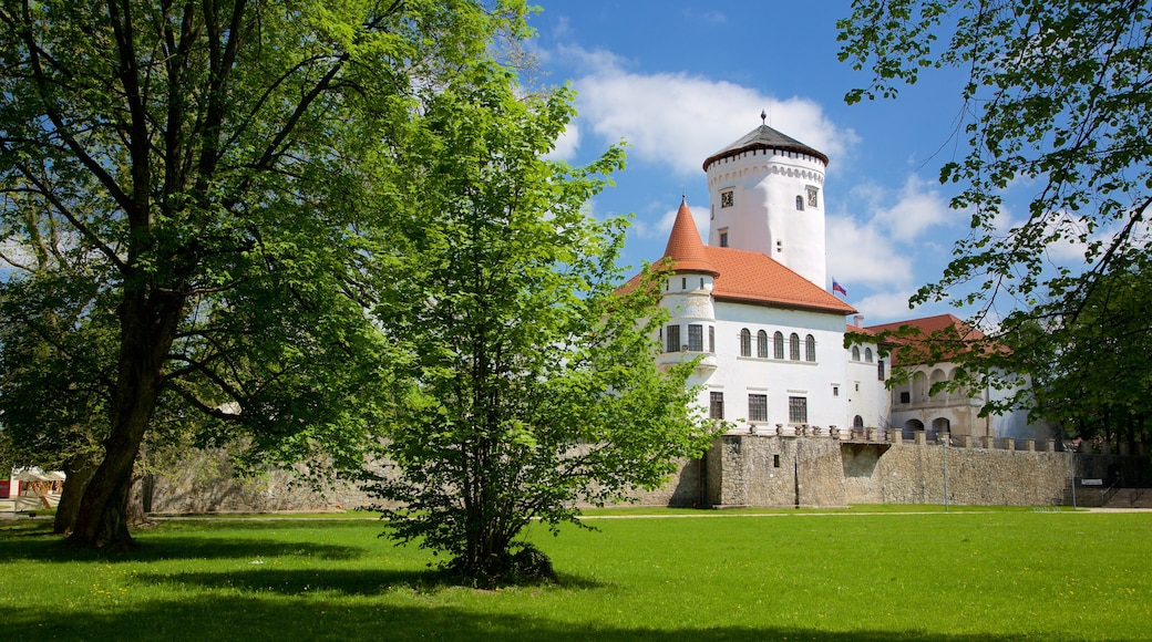 Budatin Castle featuring a park, heritage architecture and a castle