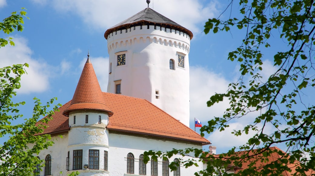 Budatin Castle which includes château or palace and heritage architecture