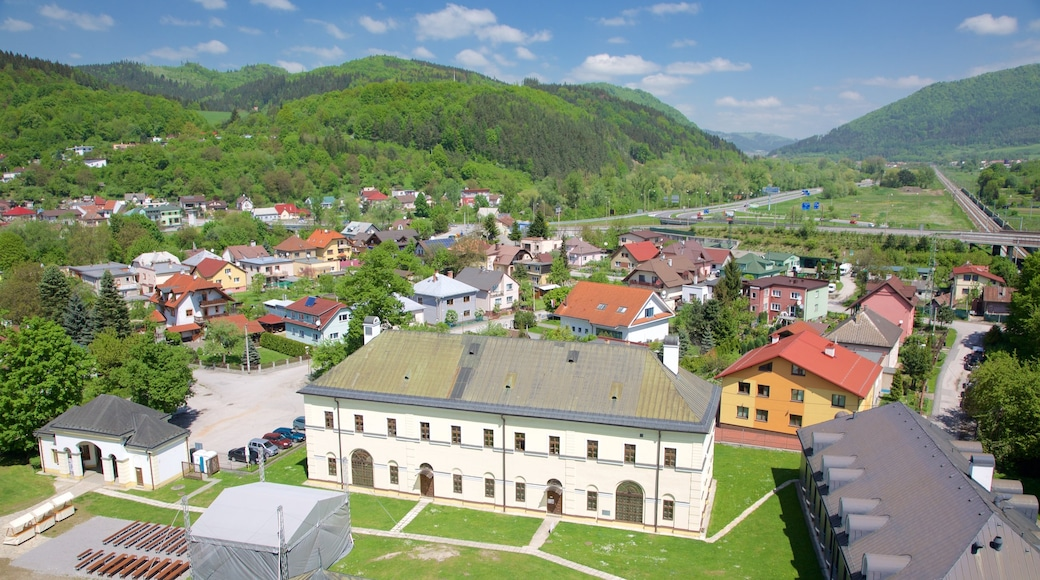 Budatin Castle which includes a garden and a city