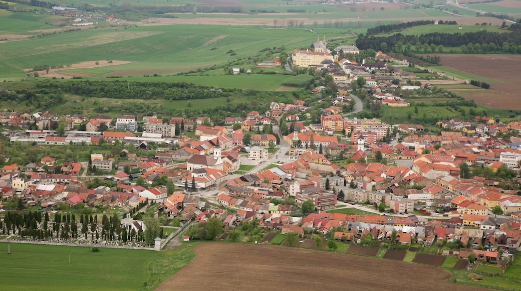 Spissky Castle showing a city and farmland