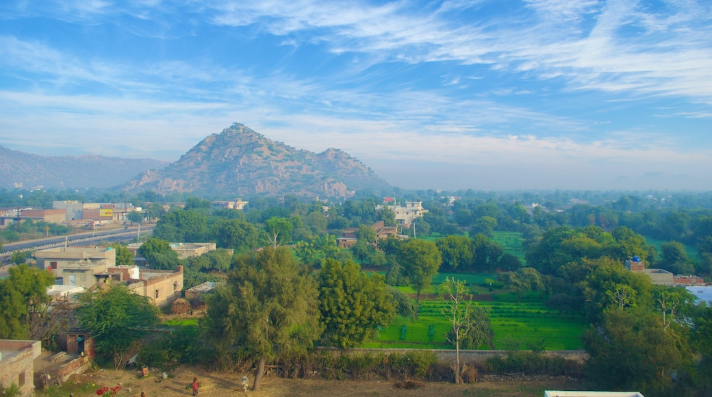 Jaipur which includes farmland, mountains and a small town or village