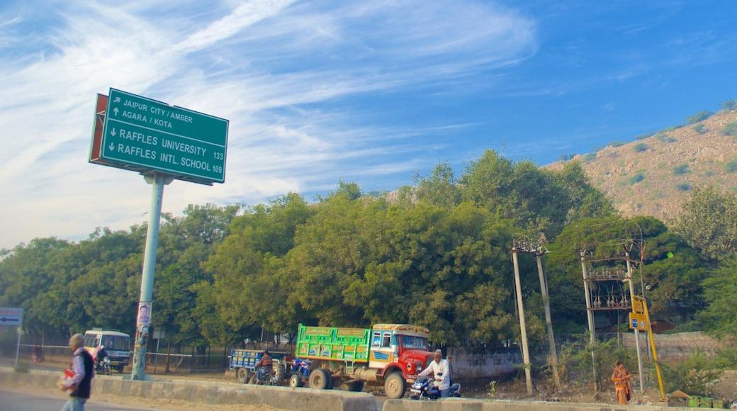 Jaipur featuring vehicle touring