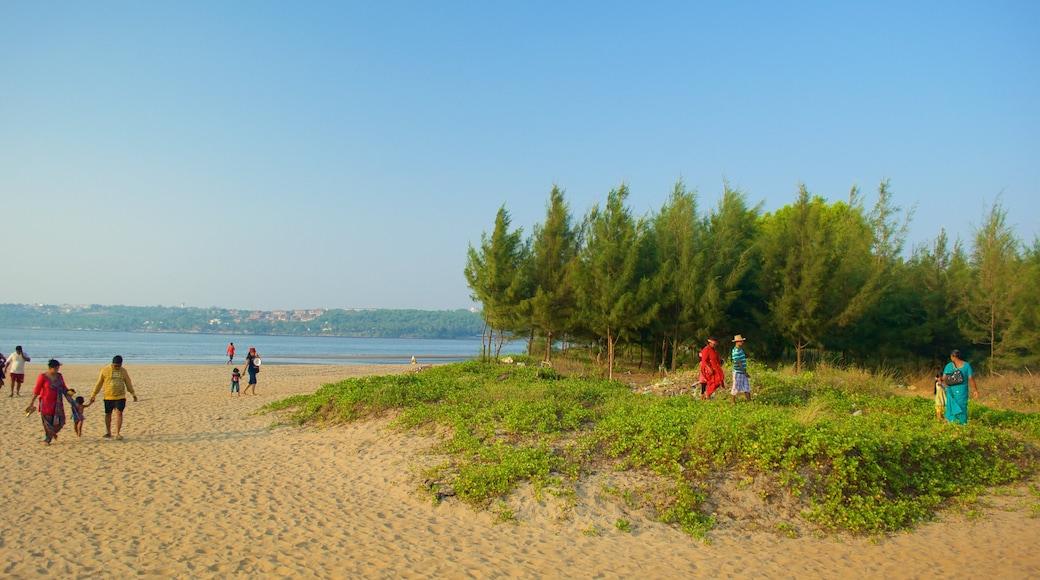 Praia Miramar mostrando paisagens litorâneas e uma praia