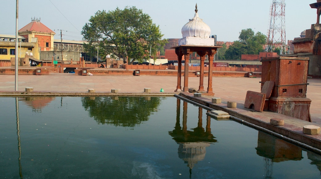 Jama Masjid showing a mosque and a fountain