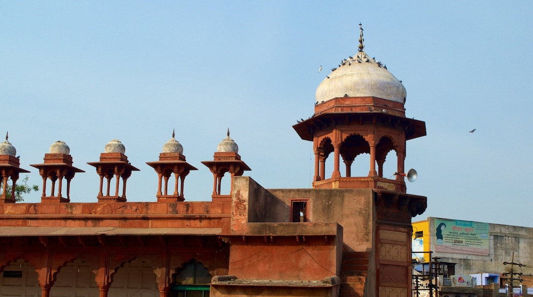 Jama Masjid showing a mosque