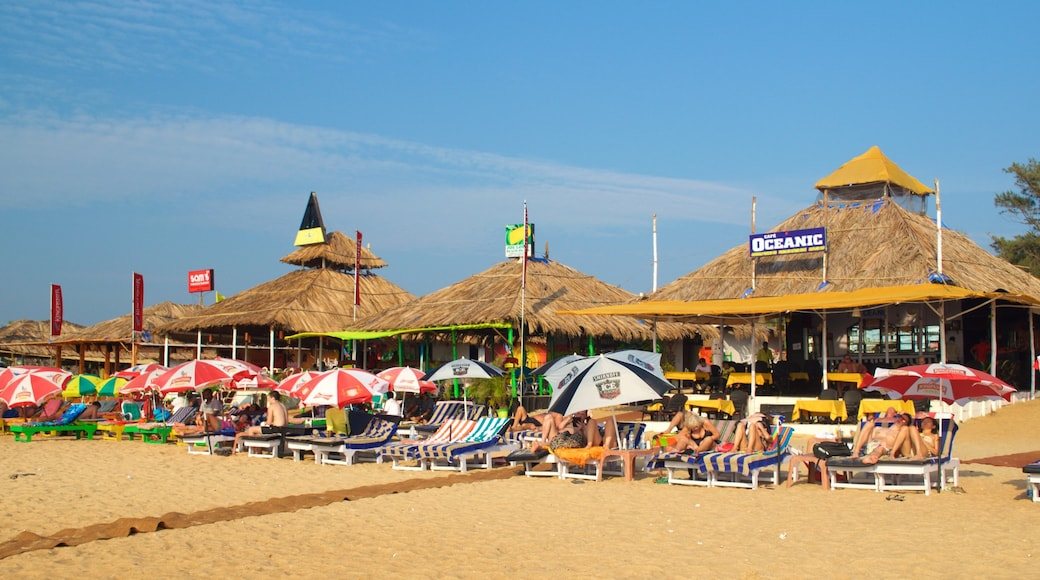 Baga Beach showing a sandy beach and a beach bar