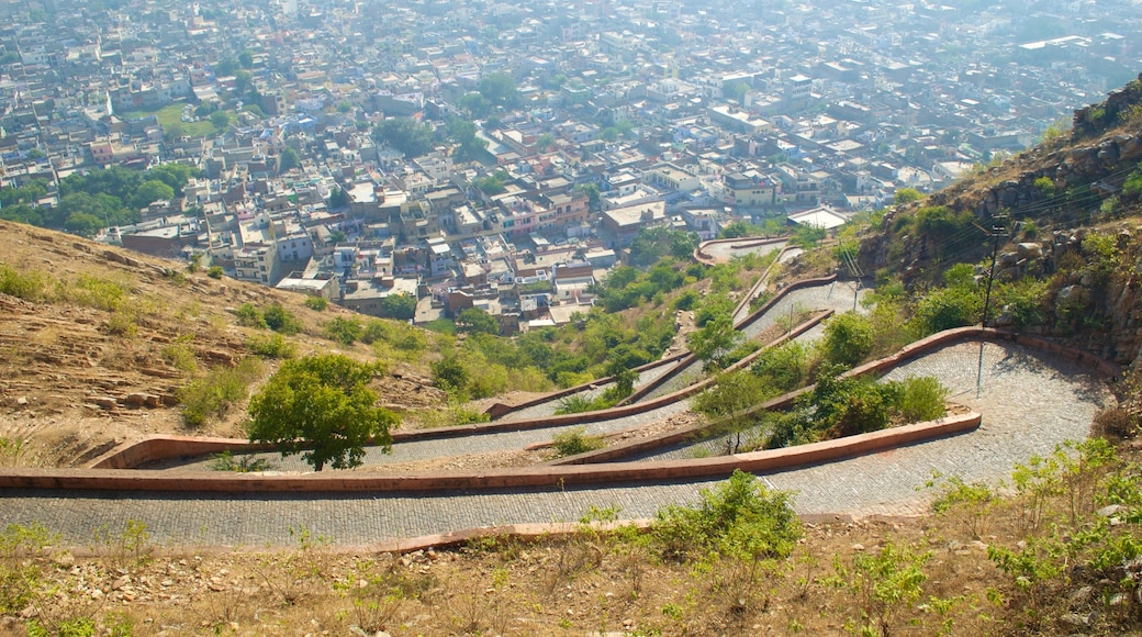Nahargarh Fort showing views and a city