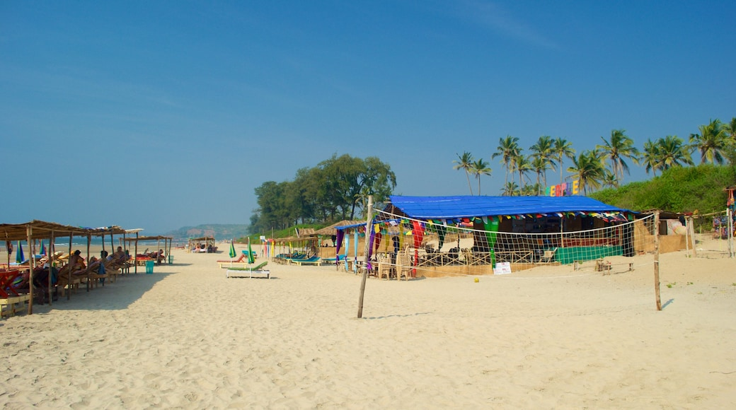 Mandrem Beach showing tropical scenes, general coastal views and a sandy beach