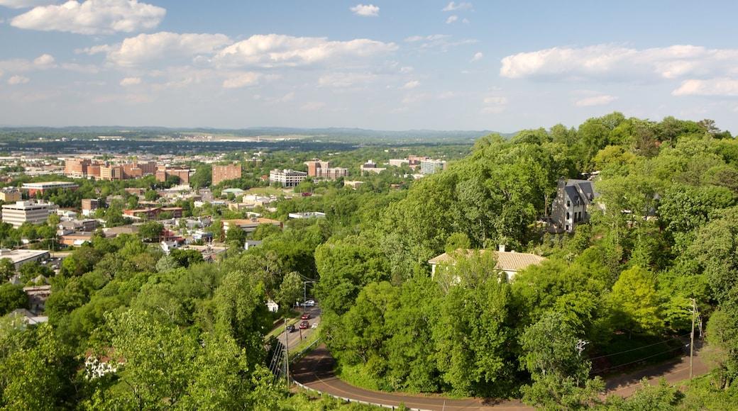 Vulcan Statue showing a city