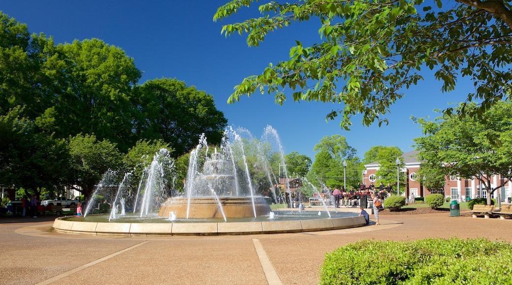 佛羅倫斯 其中包括 廣場 和 噴泉