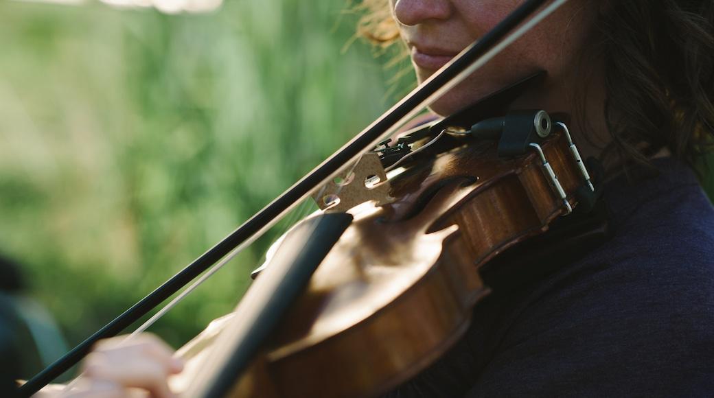 Lafayette showing music