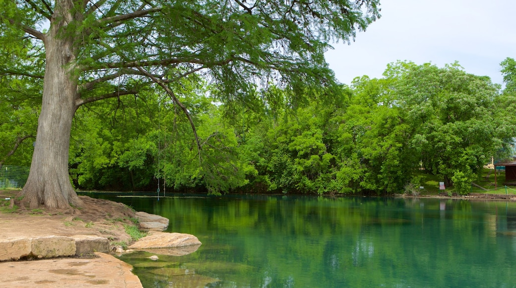 San Marcos which includes a park, a river or creek and rainforest