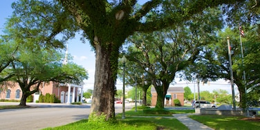 Bay Minette which includes a park