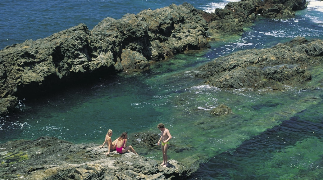 Taree showing rocky coastline as well as a small group of people