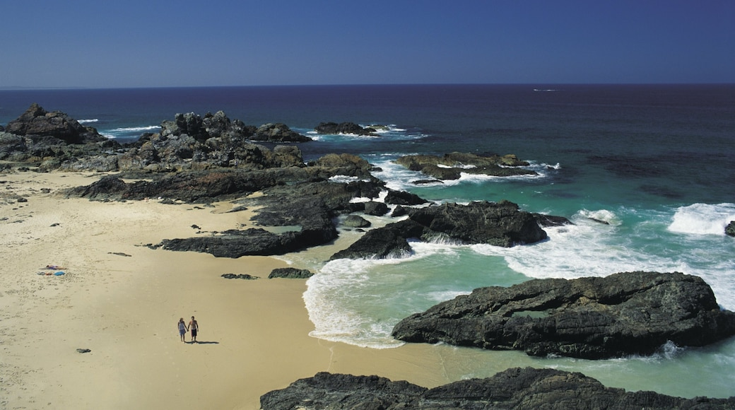 Forster which includes a sandy beach, general coastal views and rocky coastline