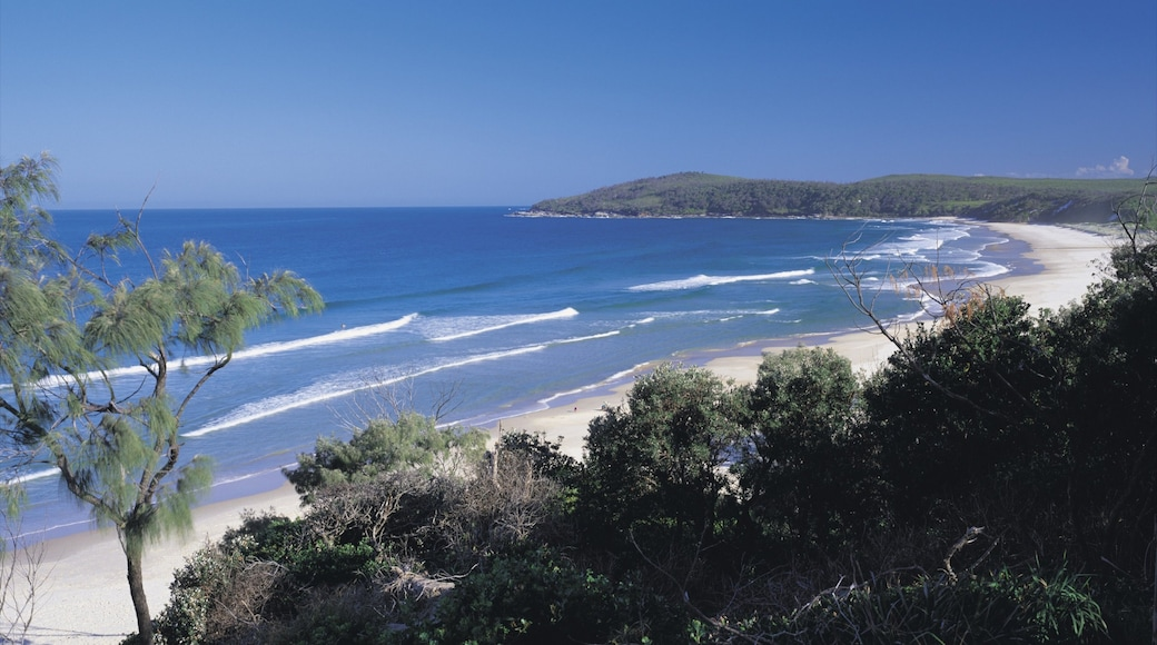 Yamba which includes a beach and general coastal views