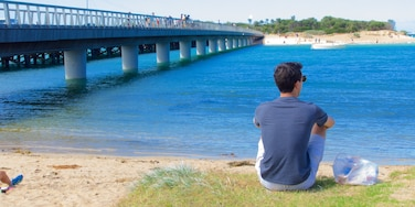 Geelong - Bellarine Peninsula featuring a bridge and general coastal views as well as an individual male
