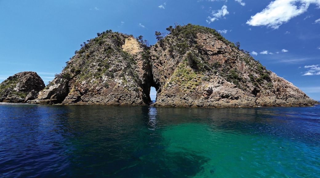 Bruny Island which includes rugged coastline and general coastal views
