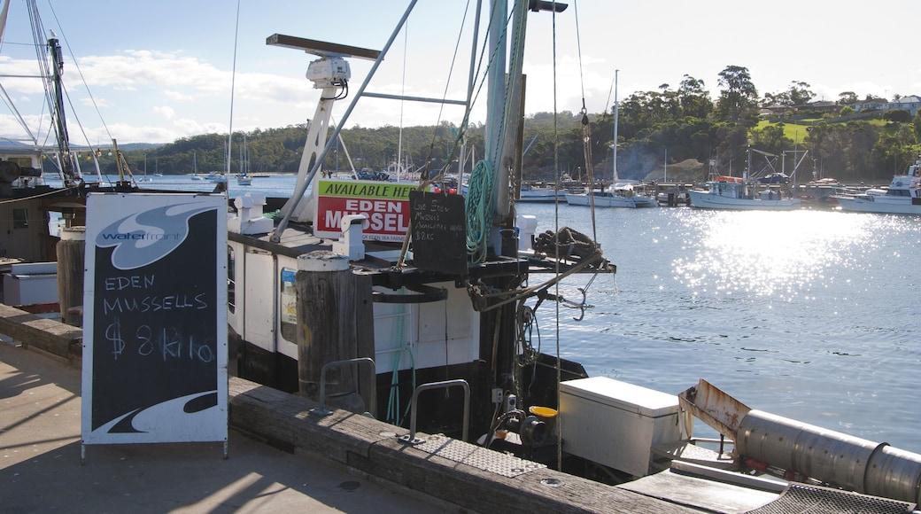 Eden que incluye una bahía o puerto, paseos en lancha y señalización