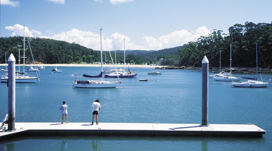 Eden mostrando una bahía o puerto, pesca y paseos en lancha