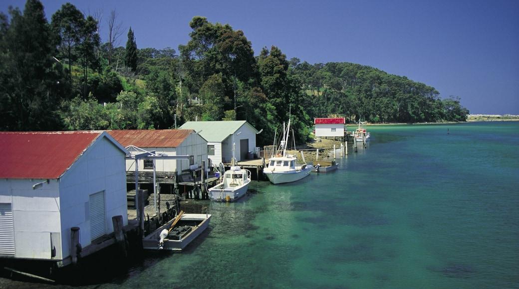 Narooma showing boating, general coastal views and a coastal town