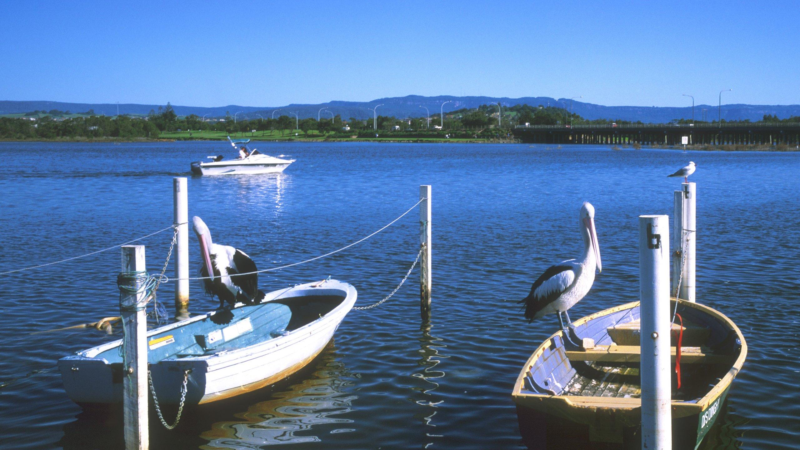 South Coast, New South Wales, Australien
