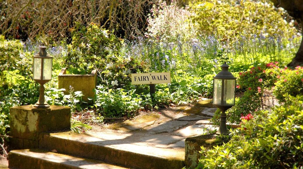 Bowral featuring a garden