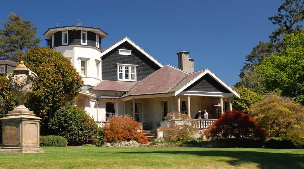 Bowral showing a house
