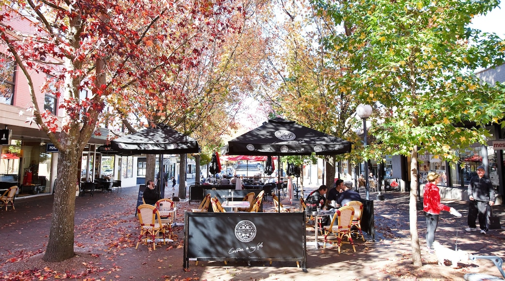 Bowral featuring a square or plaza, autumn leaves and café scenes