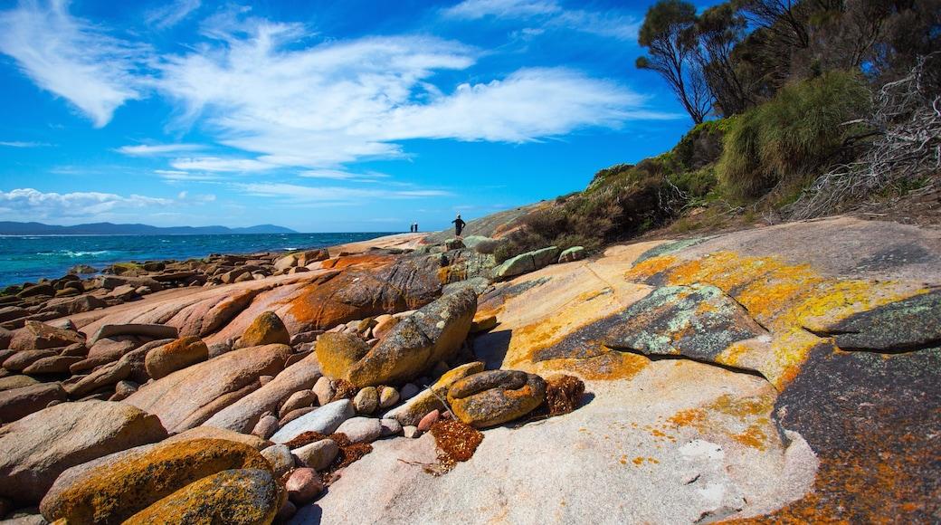 Freycinet which includes rocky coastline