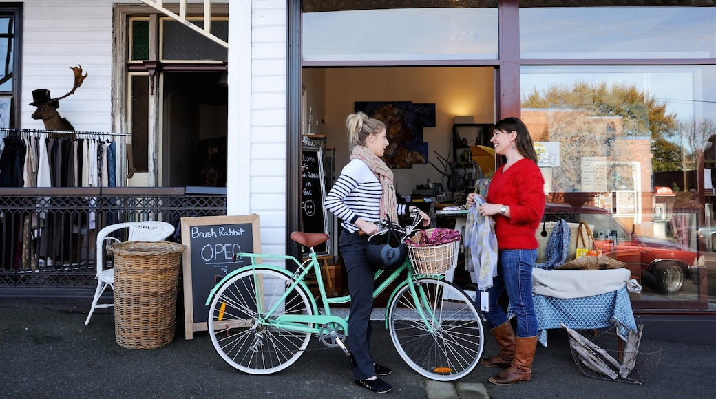 Deloraine which includes shopping and cycling as well as a small group of people