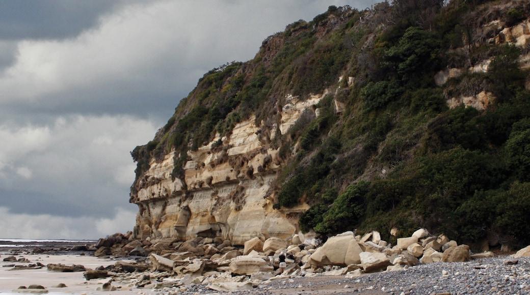 Wynyard showing rocky coastline