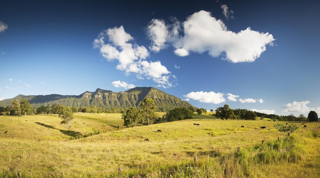 Uki que incluye escenas tranquilas, vista panorámica y montañas