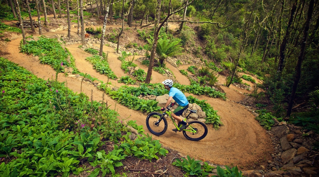 Derby featuring mountain biking and forest scenes as well as an individual male